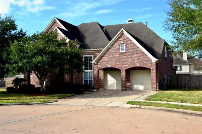Pearland Single Family Home For Sale: 2002 Mistwood Court