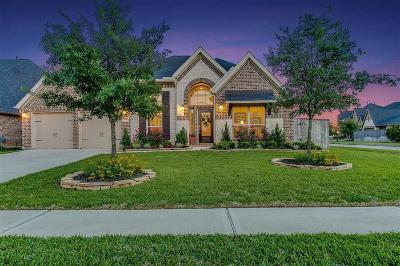 Katy Single Family Home For Sale: 27931 Bradford Ridge Drive