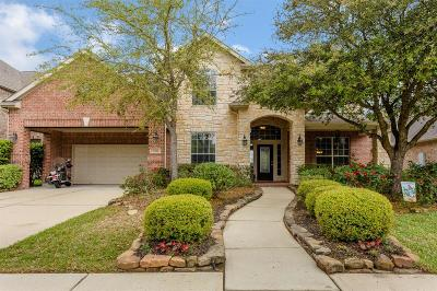 Friendswood Single Family Home For Sale: 2533 Rockygate Lane