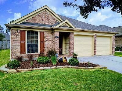 Tomball Single Family Home For Sale: 18911 Pinewood Point Lane