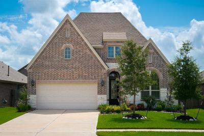 League City Single Family Home For Sale: 733 Mercer Falls Lane
