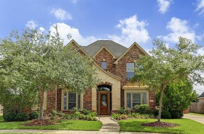 Sugar Land Single Family Home For Sale: 4418 Village Forest Drive