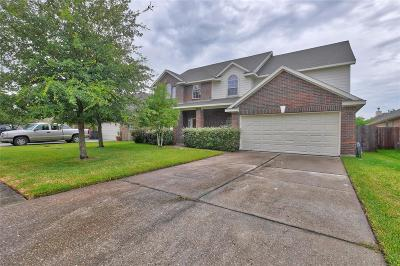 Dickinson Single Family Home For Sale: 6504 Canyon Mist Lane