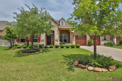Tomball Single Family Home For Sale: 12310 Rampy Green Drive