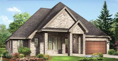 Conroe Single Family Home For Sale: 10053 Preserve Way