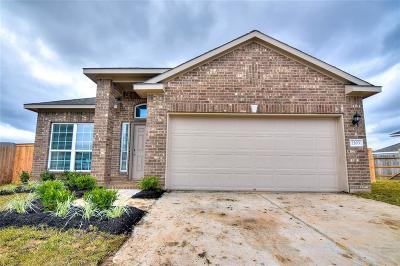 Texas City Single Family Home For Sale: 2203 Mirror Ridge Court