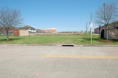 Katy Residential Lots & Land For Sale: 19922 Coldfield