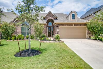 Katy Single Family Home For Sale: 27622 Dalton Bluff Court
