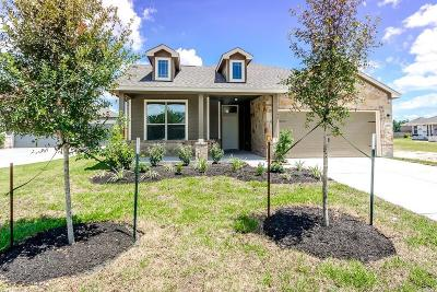 Porter Single Family Home For Sale: 21506 Pink Dogwood Drive