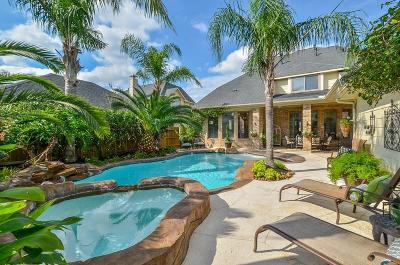 Katy Single Family Home For Sale: 8531 Iron Tree Lane