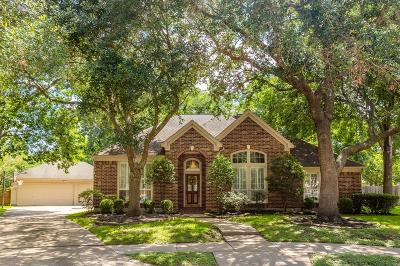 Sugar Land Single Family Home For Sale: 4907 Remington Court
