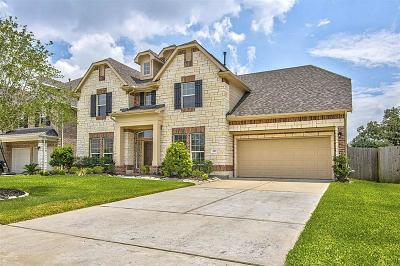 Friendswood Single Family Home For Sale: 4321 Staghorn Lane