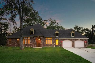 Montgomery Single Family Home For Sale: 4176 Emmett Drive