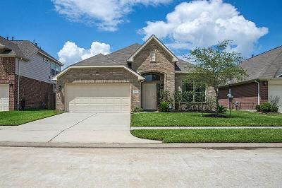 Tomball Single Family Home For Sale: 10030 Blissful Valley Lane
