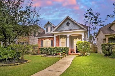 The Woodlands Single Family Home For Sale: 47 Panterra Way