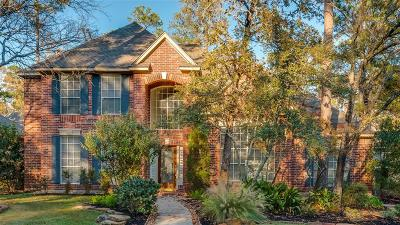 The Woodlands Single Family Home For Sale: 163 W Coldbrook Circle