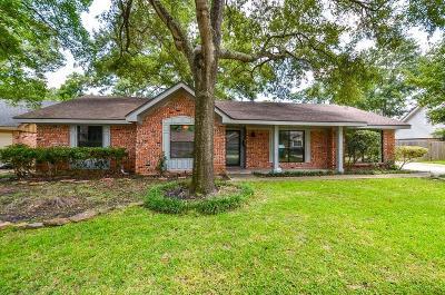 Houston Single Family Home For Sale: 10139 Knoboak Drive