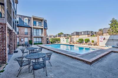 Houston Condo/Townhouse For Sale: 2400 N Braeswood Boulevard #107