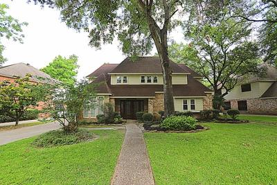 Tomball Single Family Home For Sale: 12138 Auburn Hills Drive