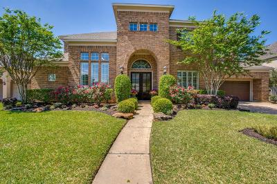 Houston Single Family Home For Sale: 8119 Sun Terrace Lane