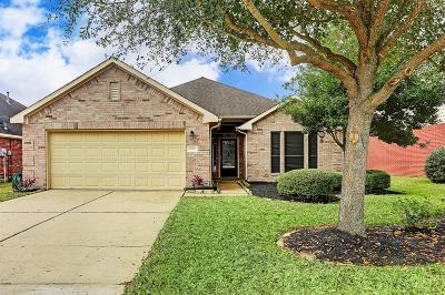 Houston Single Family Home For Sale: 4815 Harbor Glen Lane