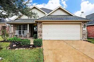 Manvel Single Family Home For Sale: 9 Wheeler Ridge Circle