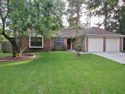 The Woodlands Single Family Home For Sale: 18 Raindream Place