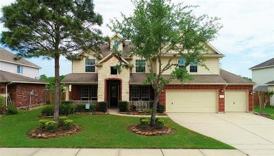 Pearland Single Family Home For Sale: 3209 Layton Place Drive