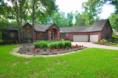 Tomball Single Family Home For Sale: 22914 Rosehollow Trail
