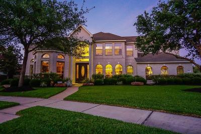 Houston Single Family Home For Sale: 8502 Forest Arbor Court