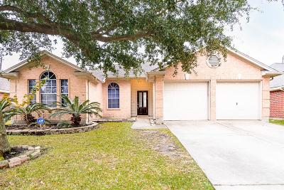 Friendswood Single Family Home For Sale: 17219 Grey Mist Drive