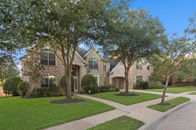 Fort Bend County Single Family Home For Sale: 3507 Standing Stone Court