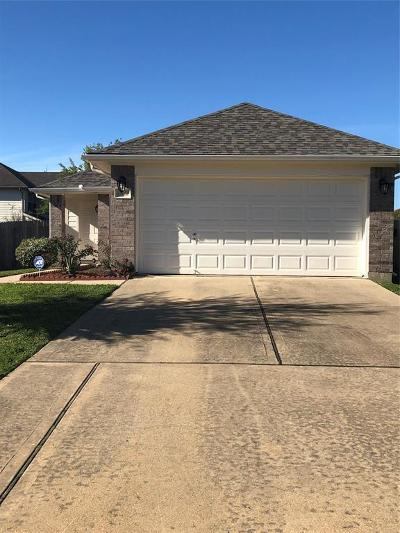 Katy Single Family Home For Sale: 19402 Montclair Meadow Lane