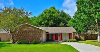 Houston Single Family Home For Sale: 5827 Ludington Drive