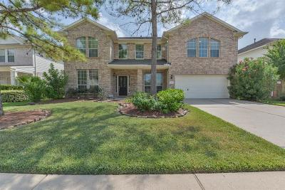 Pearland Single Family Home For Sale: 2113 Auburn Shores Drive