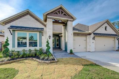 Katy Single Family Home For Sale: 11 Roesner Woods Court