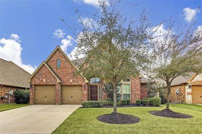 Pearland Single Family Home For Sale: 13804 Juniper Springs Drive