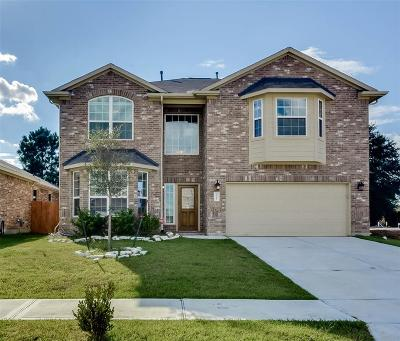 Tomball Single Family Home For Sale: 20227 Ray Falls Drive