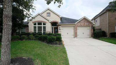 Fulshear Single Family Home For Sale: 6427 Creekside Park Drive