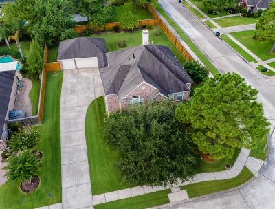 Friendswood Single Family Home For Sale: 806 Mockingbird Lane