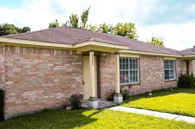 Spring Single Family Home For Sale: 22303 Tree House Lane
