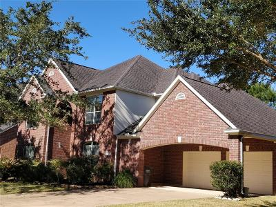 Sugar Land Single Family Home For Sale: 3907 Lakeridge Canyon Drive
