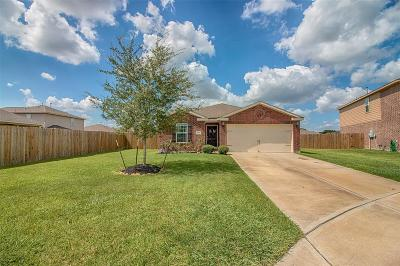 Rosharon Single Family Home For Sale: 9506 Platinum Oaks Court