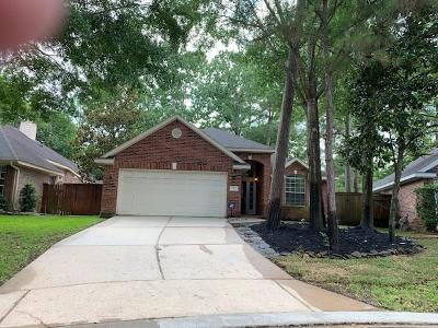 The Woodlands Single Family Home For Sale: 7 Mulberry Glen Place