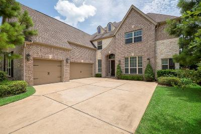 The Woodlands Single Family Home For Sale: 22 Red Moon Place