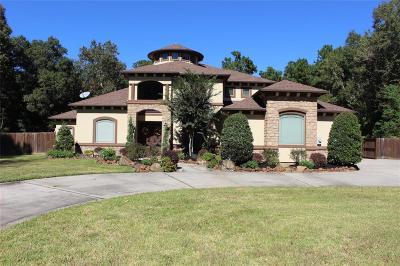 Porter Single Family Home For Sale: 19331 Serpenteer Drive