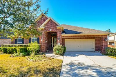 Conroe Single Family Home For Sale: 1934 Graystone Hills Drive