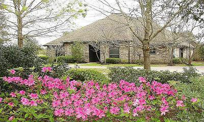 Tomball Single Family Home For Sale: 18435 Waller Tomball Road