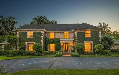 Houston Single Family Home For Sale: 205 Hedwig Road