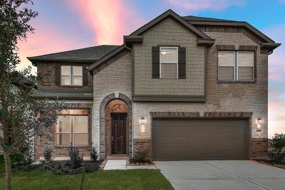Pearland Single Family Home For Sale: 14107 Wedgewood Lakes Court
